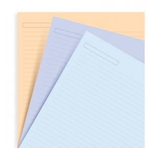 Filofax Assorted ruled notepaper