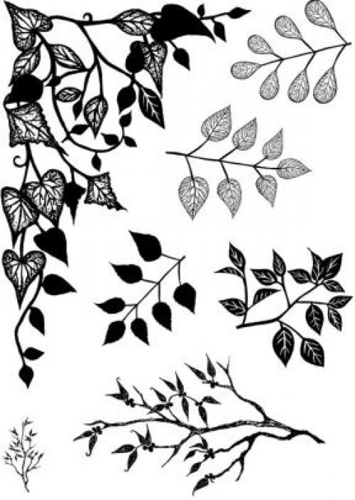 Card-io Clear Stamps - Greenery 1