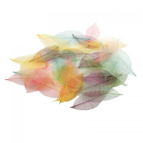 Skeleton Leaves (40pk) - Pastel